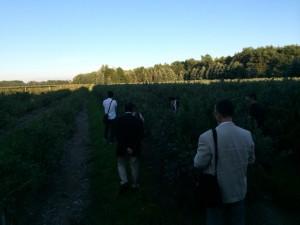 延々と続く、教会裏にあるハーレムリフォームド教会員の畑